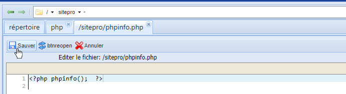 modificer fichier phpinfo