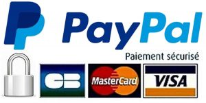 paiment webmaster avec paypal