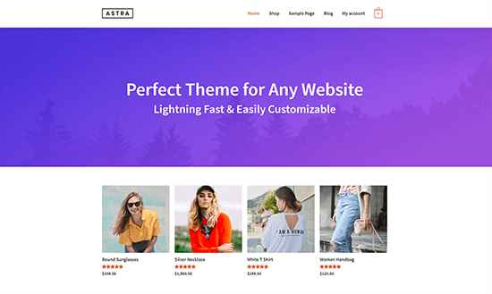 Astra Theme WordPress Themes