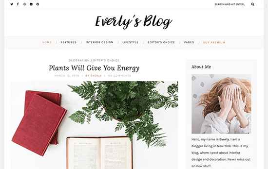 Everly Lite Free WordPress Themes