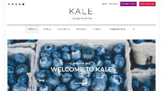 Kale Free WordPress Themes