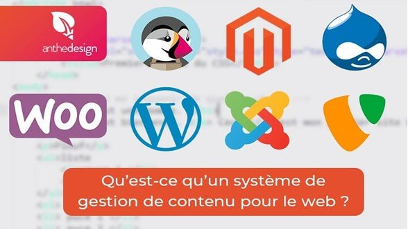 Quel système de gestion de contenu ou cms en ligne utilisez vous