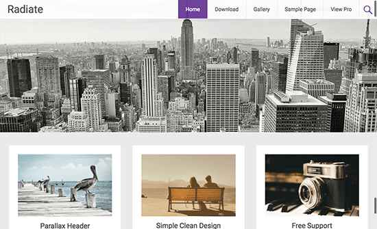 Radiate Free WordPress Themes