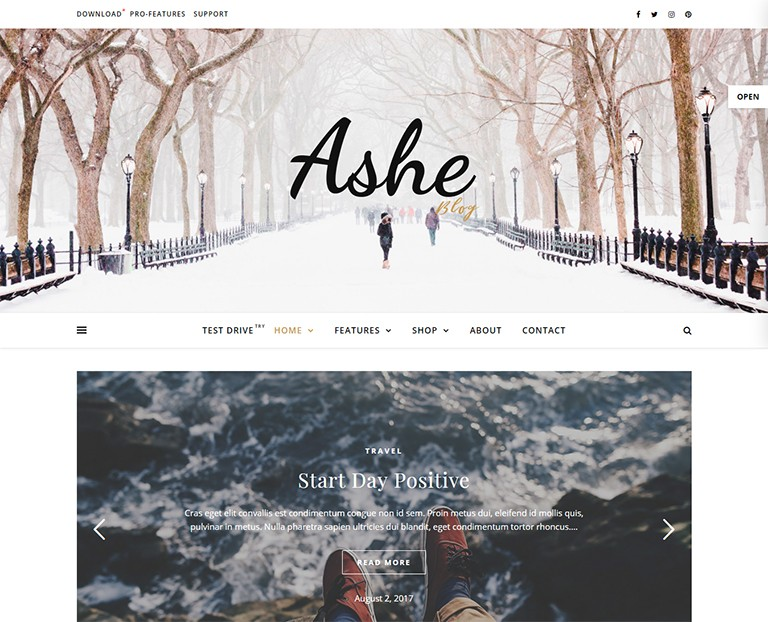 WordPress-Free-WP-BLog-themes-Ashe