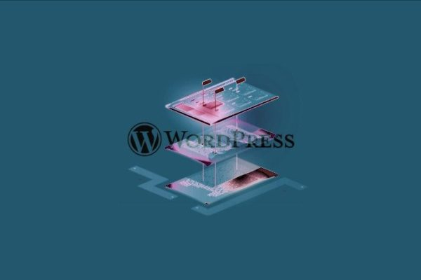 WordPress XSS