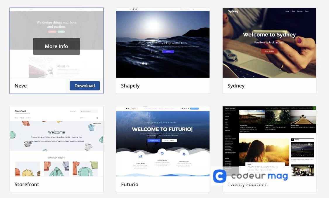 choisir un theme wordpress en fonction de vos besoins