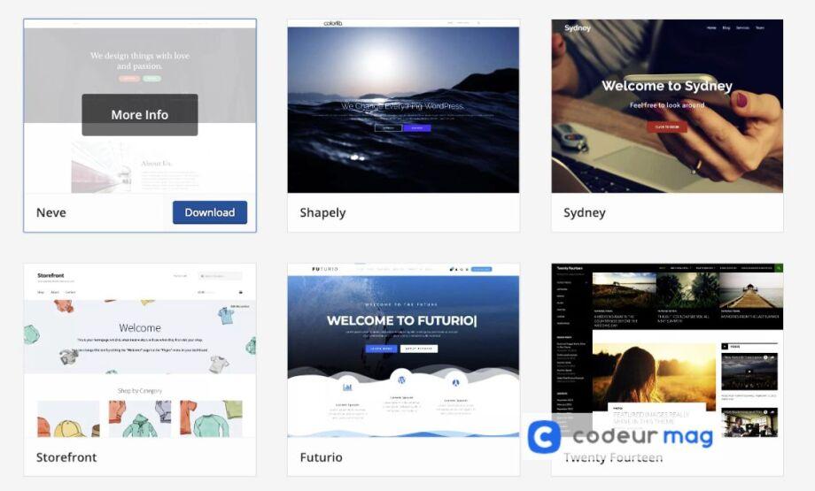 comment choisir le meilleur theme wordpress pour votre site web