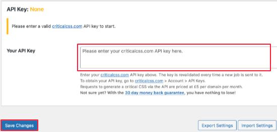 Collez votre clé d'API CSS critique