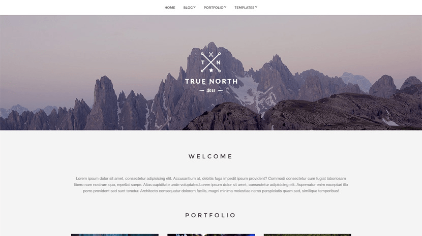 Thme wordpress gratuit TheTrue North theme