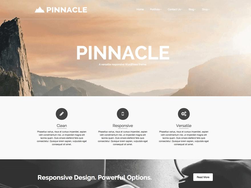 pinnacle theme (1)