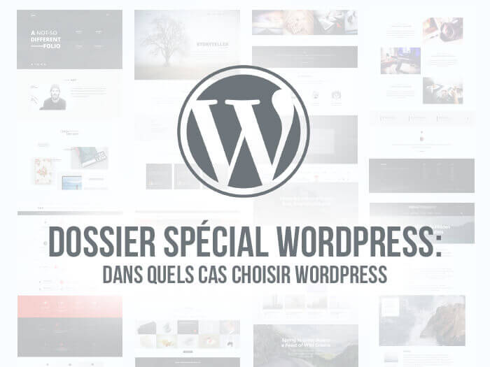 principes de developpement de wordpress pour creer de grands sites web