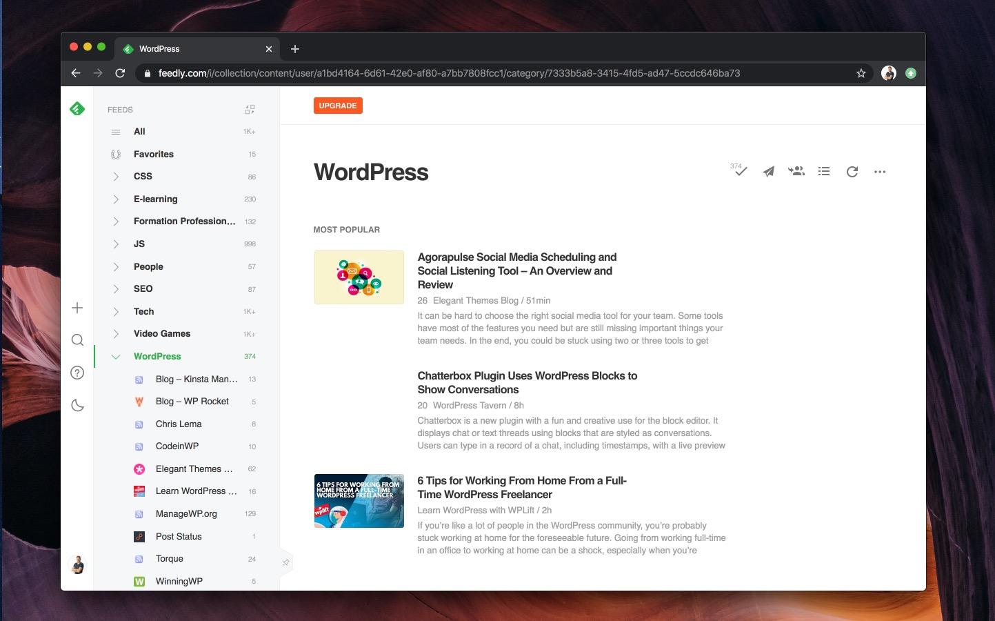 quels types de programmes wordpress sont necessaires pour les entreprises