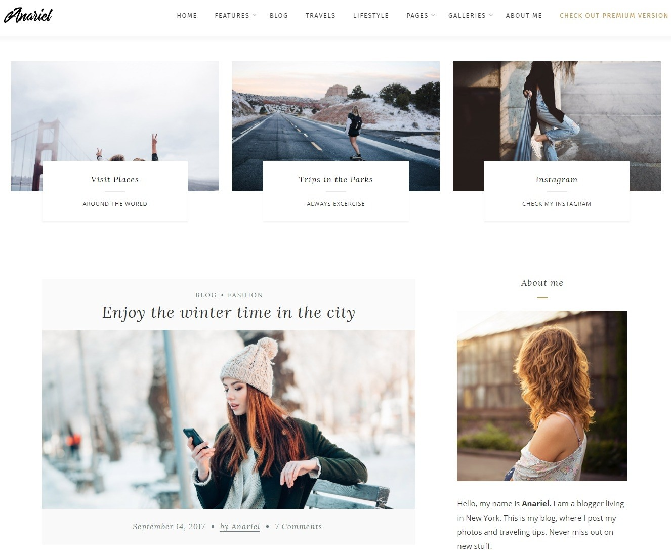 anariel-free-responsive-wordpress-theme