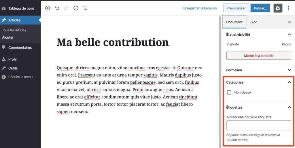 wordpress vu des deux cotes developpeurs et utilisateurs